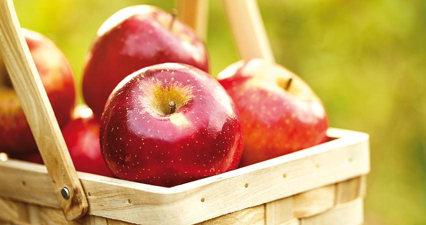 Apfel und Co. liefern uns immer weniger Vitamine!
